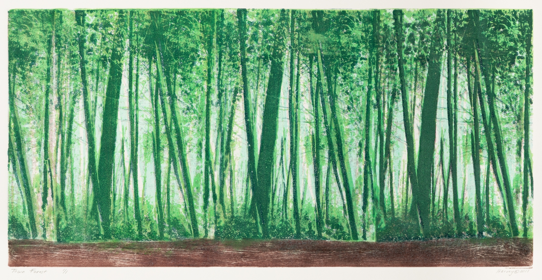 Harvey_TownForest_Monoprint_31x19.75_500