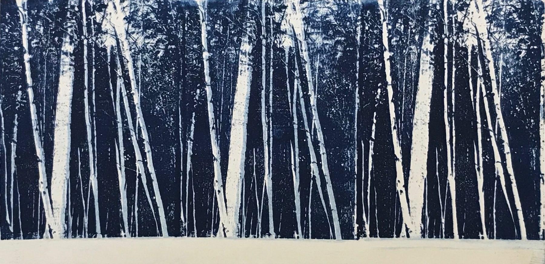 White-Forest-e1573436670995