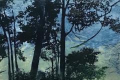 Walden-Pond-I