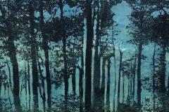 Walden Pond III